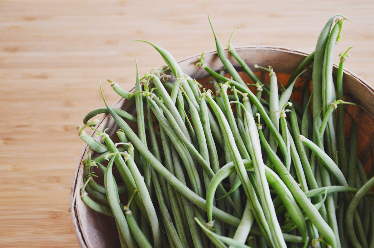 Haricots verts (4 mois)