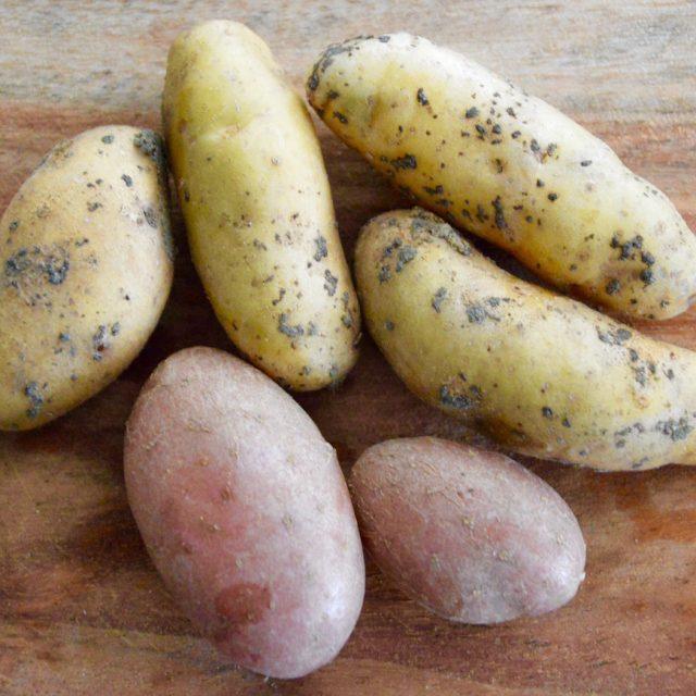 Pommes de terre pour soupe