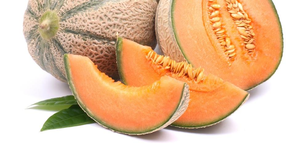 Melon (6 mois)