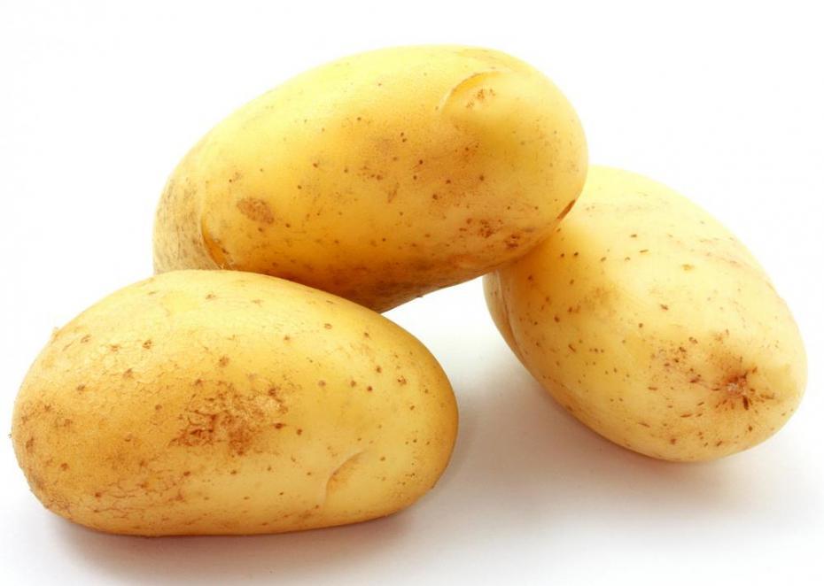 Pomme de terre (4 mois)