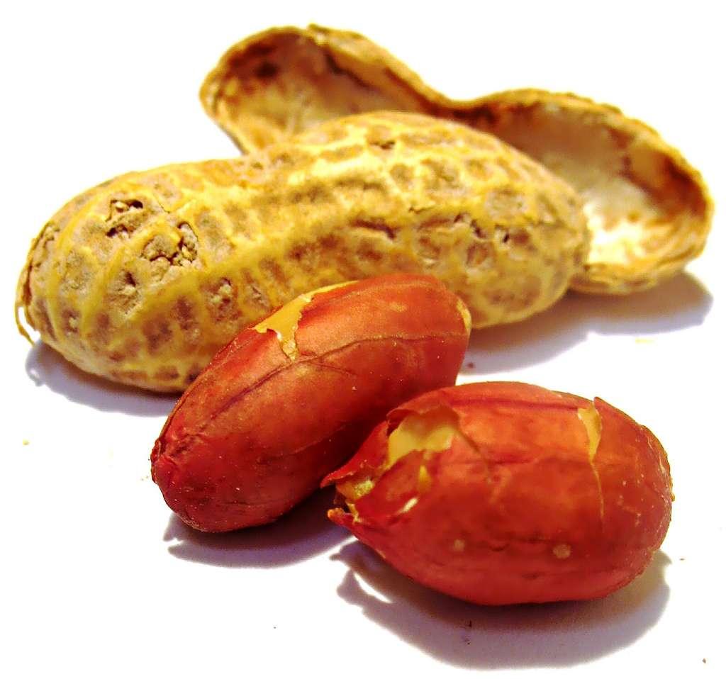 Cacahuète pour bébé (18 mois)