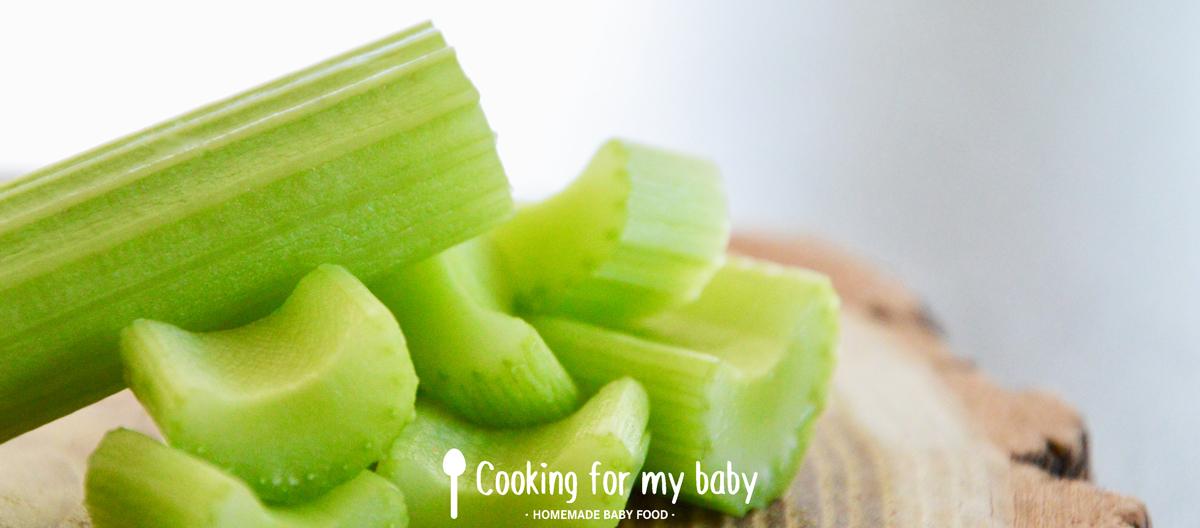 Céleri branche pour bébé