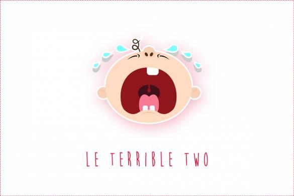 Terrible Two : Comment gérer les crises d'un enfant de 2 ans ?