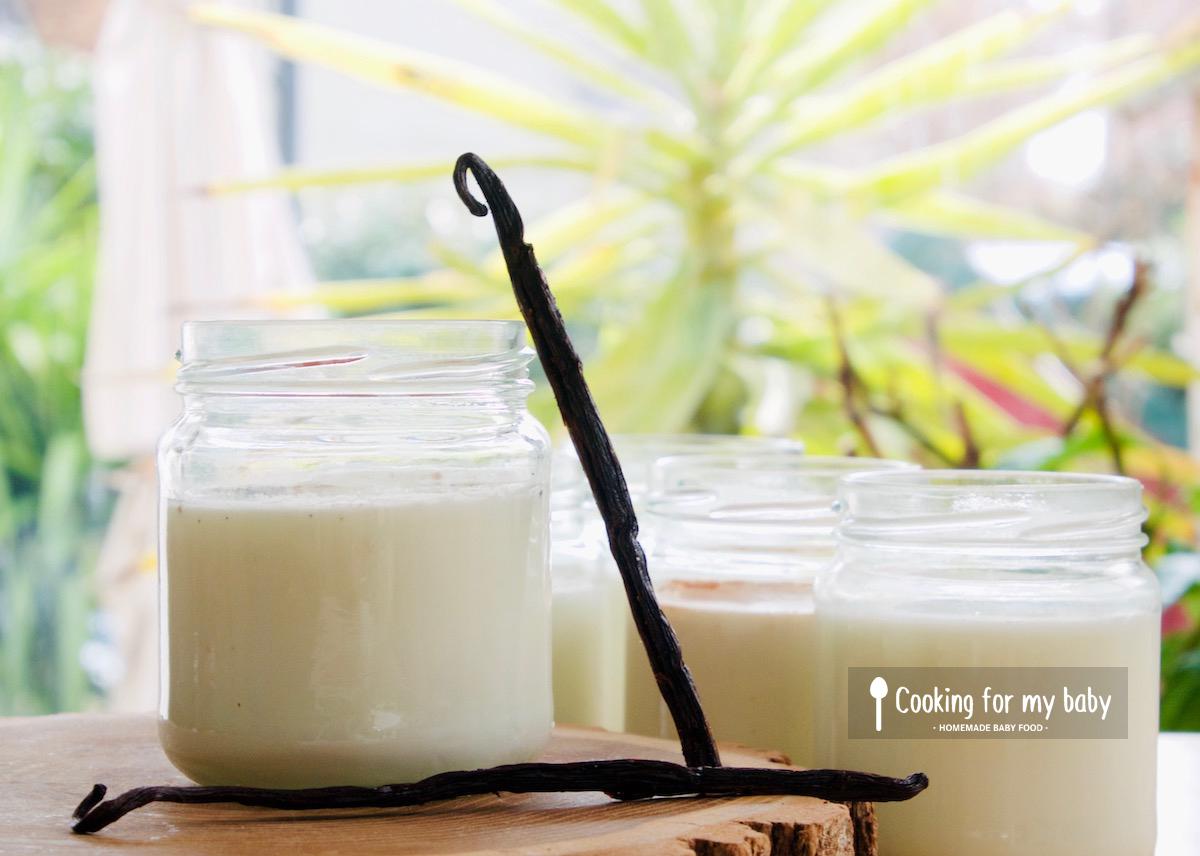 Recette de yaourt vanille maison pour bébé (Dès 6 mois)